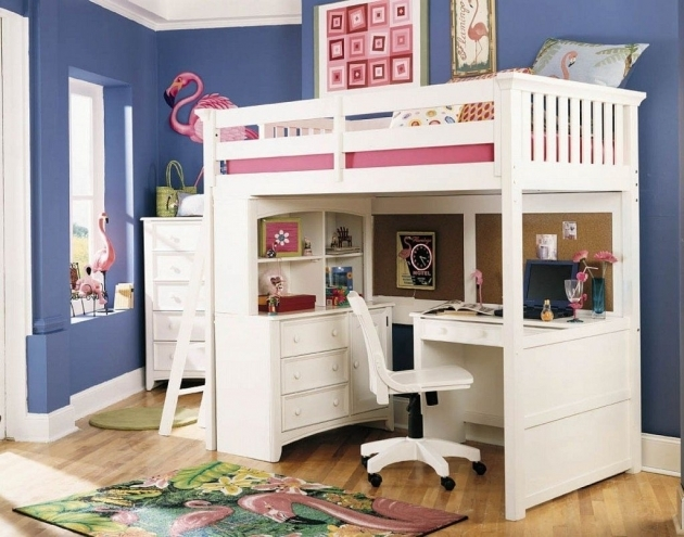 Bunk Bed With Desk Easy Install Loft Bunk Beds And Storage  Pictures 10