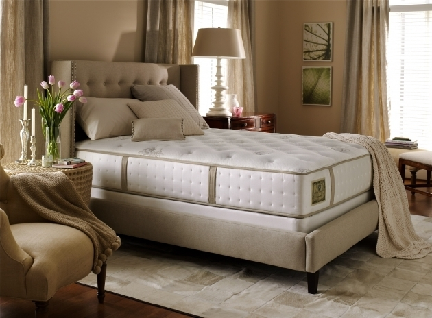 Mattress Firm Headboards Stearns Foster Duval Street Ultra Firm Photos 97