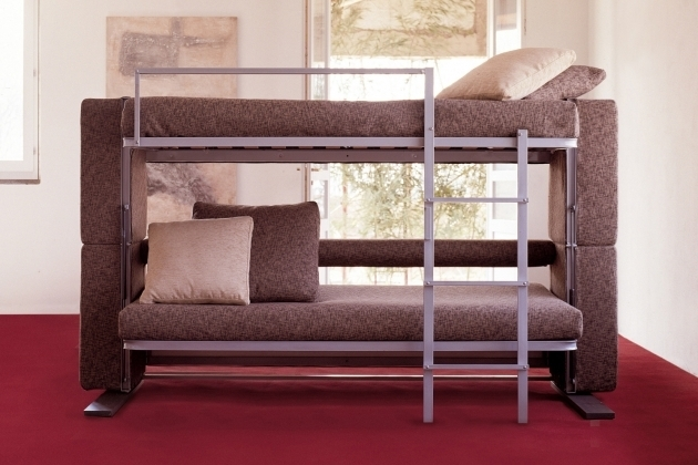 Unique Sofa Bunk Bed For Your Furniture Snails Images 54
